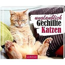 Einfach mal abschalten: Unglaublich Gechillte Katzen