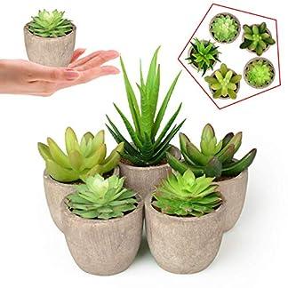 Plantas Suculentas Artificiales 5PCS Jardinera Suculenta Falso Plantas de Cactus Faux en Macetas Plantas Suculentas Pequeñas con Macetas de Color Gris para la Decoración de la Oficina en el Hogar