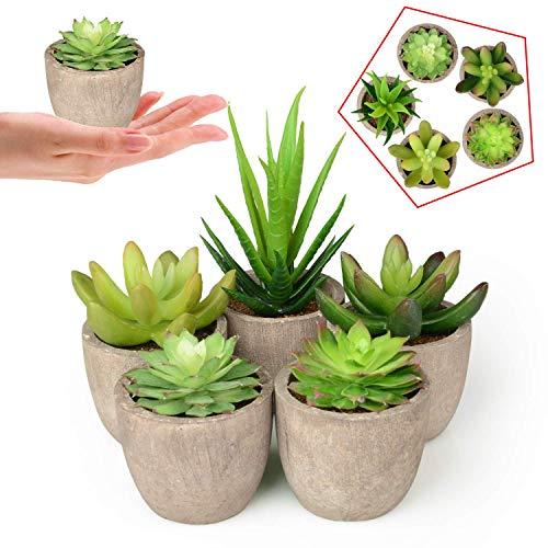 kidshobby artificiale piante grasse, 5pcs falso succulente vaso assortiti faux cactus in vaso per piante, piccole piante grasse con grigio vasi per home office
