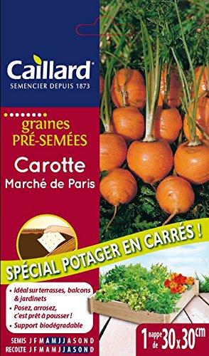 Caillard PFN410719 Graines de Carotte Marche de Paris Carre