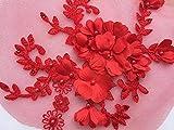 Lace Crafts Lot de 2 appliques en dentelle pour robe de mariée en dentelle Rouge Rouge
