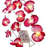 LED Lichterkette Girlande Orchideen 20 Blüten pink Dekorative Beleuchtung