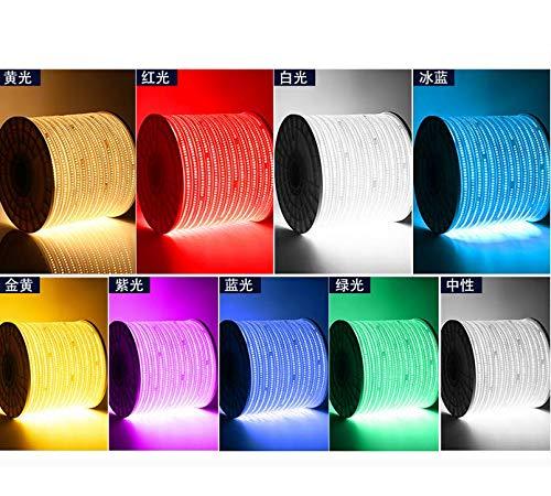 LED-Lampe mit dem Benutzer außerhalb der ultrahellen wasserdichten Linie Lampe Decke weiche Lampe Streifen Dekoration drei Farben bunte LED-Lichtleiste 144 Perlen-10 m blau-Projekt Highlights (Freies Projekt Tv)