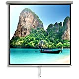 "Liberty Vega Juno 120"" (6'x8') (4:3) Manual Instalock Scrn"