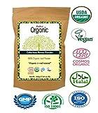 Radico Farbloses-Henna-Blattpulver 100g (bio, vegan)