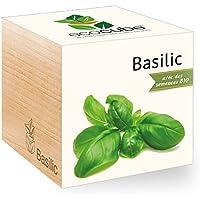 Feel Green Ecocube Basilic Certifiées Bio, Idée Cadeau (100% Ecologique), Grow-Your-Own/Kit Prêt-à-Pousser, Plantes Dans Des Cubes En Bois 7.5cm, Produit En Autriche