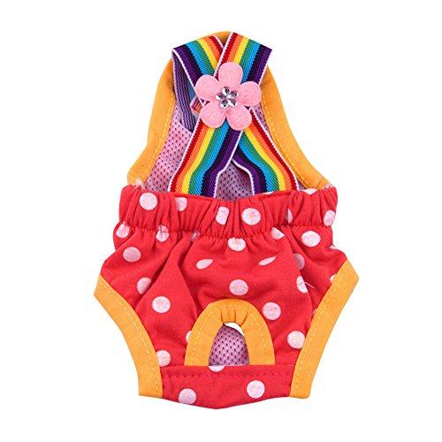 Kätzchen Kostüm Regenbogen - Routinfly Haustier Kleidung,Hund Katze Kleidung,Regenbogen Hunde physiologische Hosen Breathable Haustier Unterwäsche