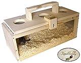 Kiefer MASSIVHOLZ Transportbox Reisebox für Nager Made in Germany von Käppel-Germany 50x20x20cm
