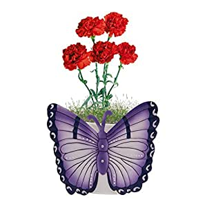 Nuha Single Pot Butterfly Railing Planter, Planter Stands, Planters Hanging, Planter Tray, Planter Pots, Pots and Planters for Balcony