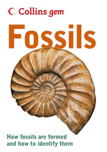 fossils-collins-gem
