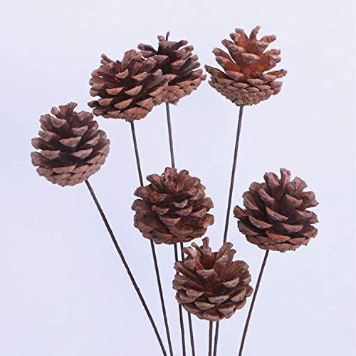 Banboyohi long pigne decorazione home decor/shooting puntelli/naturale fiori secchi 10pcs