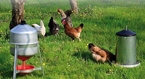 Abbeveratoio per Galline, polli a sifone in lamiera da Litri 30 Circa e Mangiatoia a tramoggia in lamiera con Coperchio da kg.18 Circa