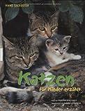 Katzen für Kinder erzählt