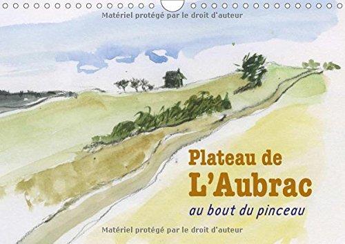 Plateau De L'aubrac, Au Bout Du Pinceau 2017: Une Randonnee Sur Le Plateau De L'aubrac, Au Bout Du Pinceau
