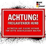 Vorsicht Hund Schild als Abschreckung/Einbruchschutz | Warnschild für Haustür/Gartentor/Gartenzaun | 30x20 cm Kunststoff