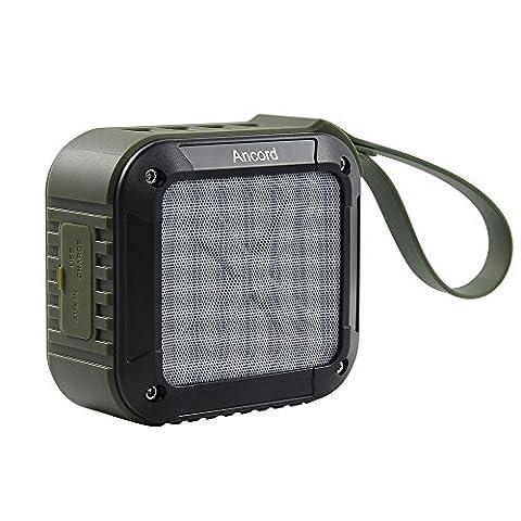 Ancord Haut-parleur Portable Bluetooth extérieur avec Radio FM - étanche et Rechargeable (Vert)