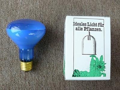 Wachstums-Glühlampe E27 / R63 von Naeve Leuchten - Lampenhans.de