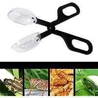 Toruiwa Reptile Zange Clip Aquarium Terrarium Futter Werkzeug Insekten Werkzeug für Reptilien Insekt Brot Bug
