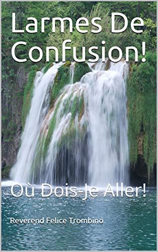 Couverture du livre Larmes De Confusion!: Où Dois-Je Aller!