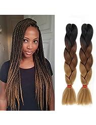 Lot de 6 extensions capillaires Eunice Hair en cheveux synthétiques tressés de 2 couleurs, Kanekalon,  à coiffer soi-même 100 g/morceau de 61 cm
