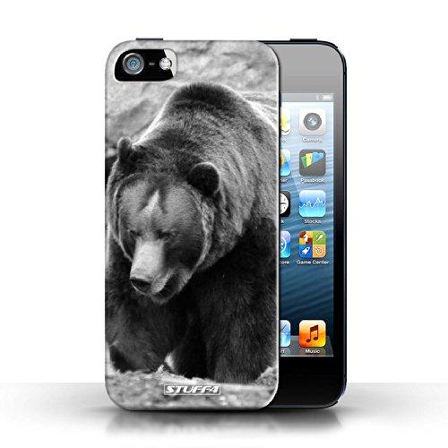 Hülle Case für Apple iPhone 5/5S / Faultier Entwurf / Zoo-Tiere Collection Bär