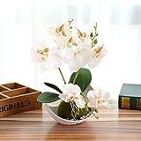 FYYDNZA Mode Drei Gabel Schmetterling Orchidee Bonsai Blume Künstliche Weiße Topf Set Hochzeit Home Hochzeit Dekoration, weiß