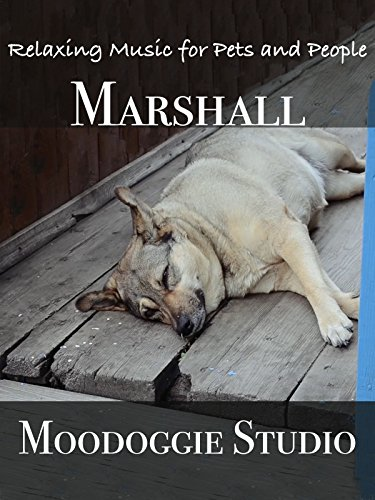 marshall-relaxing-music-for-pets-and-people-ov