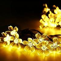 Salcar 5M Guirlande Lumineuse Solaire, Chaîne de Lumière Noël LED avec 20 Cerise Fleur, IP44, Eclairage de Décoration Extérieur, Intérieur pour Jardin, Balcon, Party, Mariage, Fête(Blanc chaud)