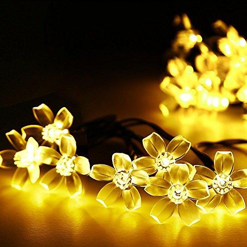 Amorphes Panel (Salcar 5 Meter Solar LED Lichterkette 20 Kirschblüten Deko Beleuchtung für Weihnachten, Party, Festen, 2 Leuchtmodi (Warmweiß))