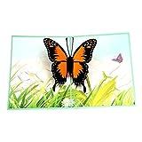 Exing Geburtstagskarte Graduierung,Schmetterling Grußkarten Handgemachte Geburtstag Hochzeitseinladung 3D Pop Up Karte