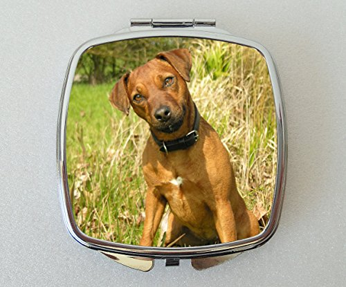 Starprint Sublimation Patterdale Terrier Miroir Compact Cadeau de Fantaisie – N ° 2
