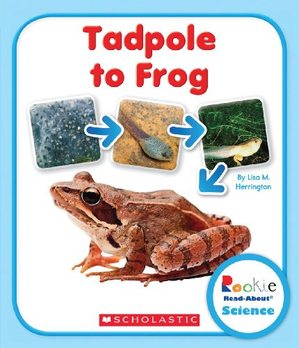 Herrington, L: Tadpole to Frog (Rookie Read-About Science: L