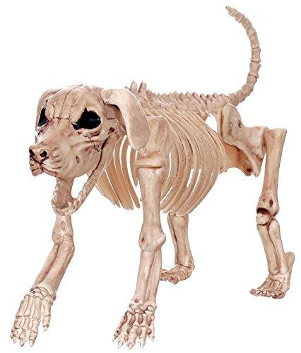 Crazy Bonez Skelett Hund–Beagle (Prop Hund Halloween Skelett)
