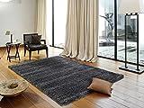 PANORAMA SHAGGY Hochflor Langflor Teppich in dk.grau, Größe: 80x150 cm
