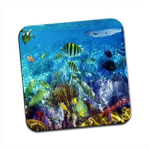 Sotto il mare il mondo è pieno di pesci colorati unico Coaster