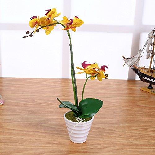 Künstliche Orchideen Gelb mit Topf 40cm - 2 Rispen - Echt Wirkend - Flexibel