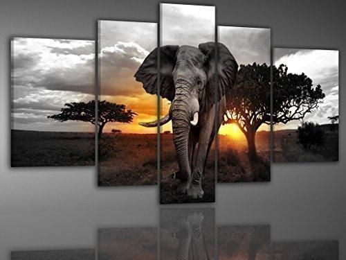BILDER-MANUFAKTUR, LEINWANDBILDER, KUNSTDRUCK, WANDBILD, BILD, BILDER, 7631 FARBE 3, AFRIKA ELEFANT WILDNIS SAFARI