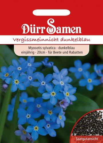 Dürr-Samen Vergissmeinnicht dunkelblau
