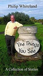 The Things You See...: A collection of stories: Volume 5 (The Nostagedy Collection)
