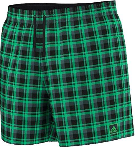adidas Herren Badeshorts Check SL grün