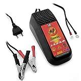 Batterieladegerät 12 Volt / 0,9 A Typ AccuGard Bike