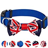 Blueberry Pet Nationalstolz Artistische Handgefertigte Union Jack Flagge Fliege Hundehalsband in Blau, M, Hals 37cm-50cm