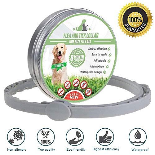 Sogetgod Anti Floh und Zecken Halsband,Wasserdicht Anti Zecken Halsband - Anti Flohhalsband für Hunde und Katzen,8 Monate Schutz - Verstellbar für Kleine Mittelgroße Haustiere, natürliche Formel