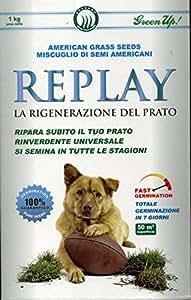 Semente americana Replay - La Rigenerazione del Prato - 1 Kg