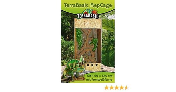 terrarium repcage