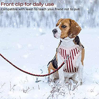 PETBABA Christmas Dog Harness, Soft Fleece Vest Warm Puppy in Winter, Front Clip Provide No Pull Choke Free Walk, Bow… 5