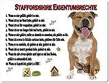 Blechschild/Warnschild/Türschild - Aluminium - 20x30cm Eigentumsrechte Motiv: American Staffordshire Terrier braun sitzend - 03
