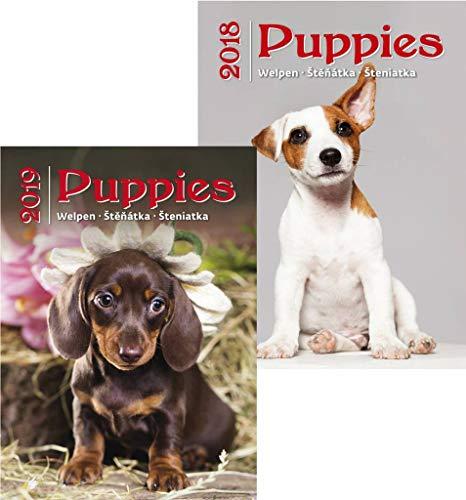 (Kalpa Wandkalender 2018+ 2019  Combo Kalender   Kalender 2018& 2019  2Stück Puppies)