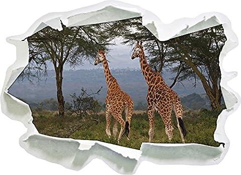 girafes gracieux dans la savane, le papier 3D sticker mural taille: 62x45 cm décoration murale (Increspato Tela)