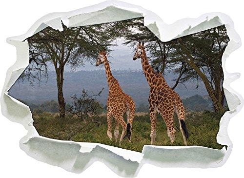 giraffe graziose a Savannah, di carta 3D autoadesivo della parete formato: 62x45 cm decorazione della (Increspato Tela)